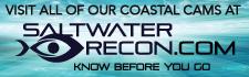 saltwater-recon.com